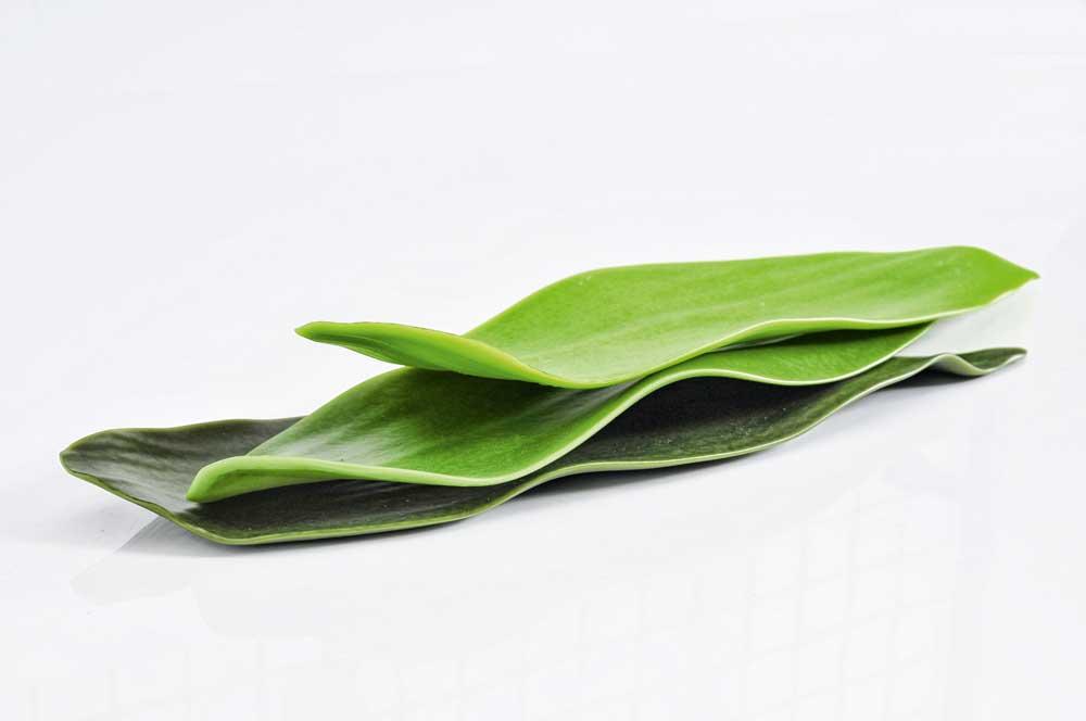 Schalen in Form von Bambus-Blättern